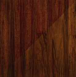 Brazilian Walnut Species